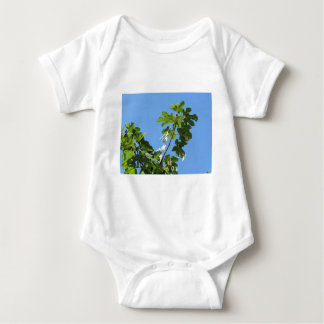 Figs on tree branches baby bodysuit