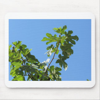 Figs on tree branches mouse pad