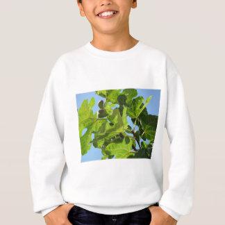 Figs on tree branches sweatshirt