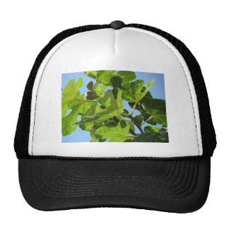 Figs on tree branches trucker hat
