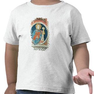 Figura alegórica de la templanza, uno de varios d camisetas