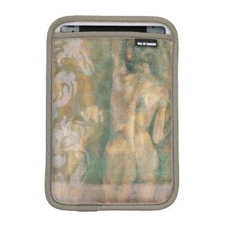 Figura femenina desnuda de Jennifer Goldberger Fundas Para iPad Mini