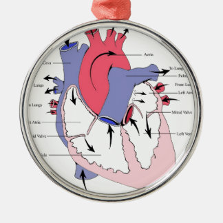 Figure 2. Normal Heart Function.jpg Round Metal Christmas Ornament