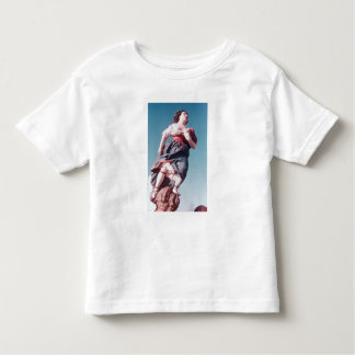 Figurehead from unknown sailing ship toddler t-shirt