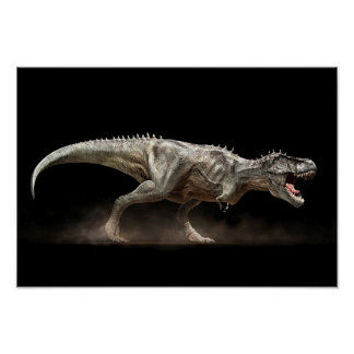 Fijar a tiranosauro T-rex Póster