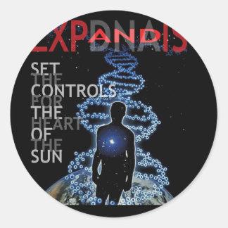 Fije los controles para el corazón de The Sun Pegatina Redonda