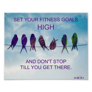 Fije sus metas de la aptitud altas: Pájaros y ciel Poster