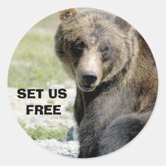Fíjenos libres, ahorre los osos pegatina redonda
