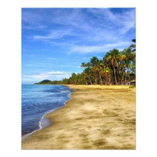 fiji-293826 fiji beach sand palm trees tropics sky flyer
