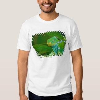 Fiji crested Iguana, Kula Eco Park, Viti Levu, T-Shirt