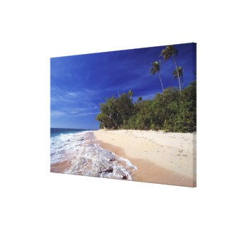 Fiji Islands, Tavarua. This beach on Tavarua, Canvas Print