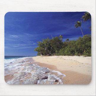 Fiji Islands, Tavarua. This beach on Tavarua, Mouse Pad