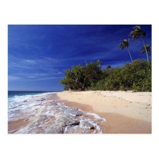 Fiji Islands, Tavarua. This beach on Tavarua, Postcard