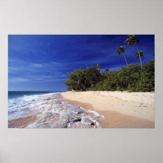 Fiji Islands, Tavarua. This beach on Tavarua, Poster