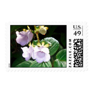 Fiji Purple Orchid Stamps