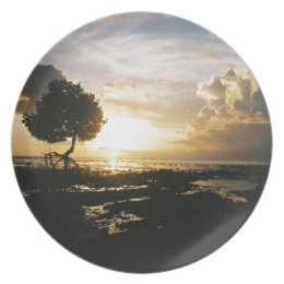 Fiji Sunset 2 Dinner Plate
