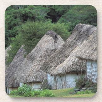Fiji, Viti, casas tradicionales de la choza Posavasos