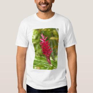 Fiji, Viti Levu Island. Flower. T-Shirt