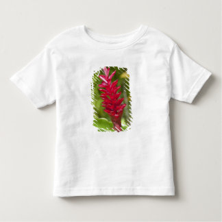 Fiji, Viti Levu Island. Flower. Toddler T-shirt