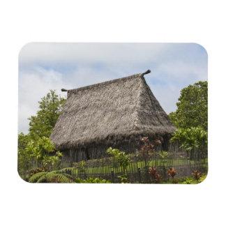 Fiji, Viti Levu Island. Polynesian Cultural Magnet