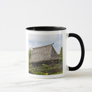 Fiji, Viti Levu Island. Polynesian Cultural Mug