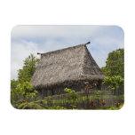 Fiji, Viti Levu Island. Polynesian Cultural Magnets