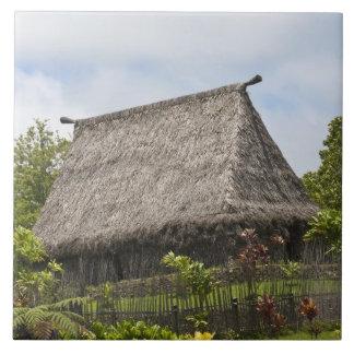 Fiji, Viti Levu Island. Polynesian Cultural Large Square Tile