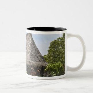 Fiji, Viti Levu Island. Polynesian Cultural Two-Tone Coffee Mug