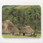 Fiji, Viti Levu, Navala, casas tradicionales de Bu Tapetes De Raton