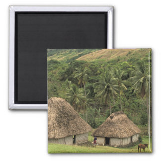 Fiji, Viti Levu, Navala, Traditional Bure houses Fridge Magnets