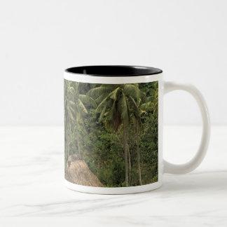 Fiji, Viti Levu, Navala, Traditional Bure houses Two-Tone Coffee Mug