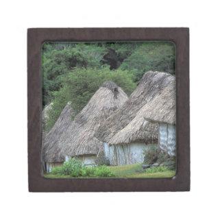 Fiji, Viti, Traditional hut houses. Premium Trinket Box
