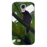 Fiji White-eye (Zosterops explorator) Galaxy S4 Cover