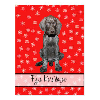 Fijne kerst german shorthaired pointer Chistmas Postcards