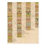 Fila 21 de estados tarjetas postales