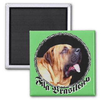 Fila Brasileiro Dog Magnet