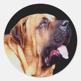 Fila Brasileiro Dog Stickers