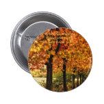 Fila de árboles en otoño pins