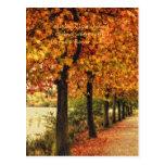 Fila de árboles en otoño postal
