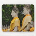 Fila de las estatuas de Buda, Chaya Mongkol de Wat Alfombrillas De Ratones