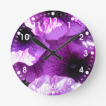 Fila de petunias púrpuras relojes
