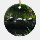Fila del ornamento de las tortugas adorno