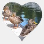 Fila del pato pegatina corazón