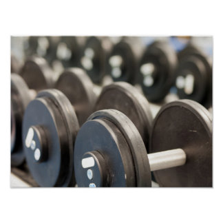 Fila del primer de las pesas de gimnasia póster