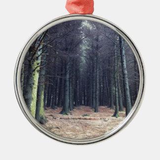 Filas de árboles adorno redondo plateado