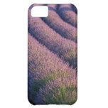 Filas de la lavanda en Provence Funda Para iPhone 5C