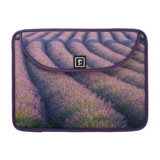 Filas de la lavanda en Provence Fundas Para Macbook Pro