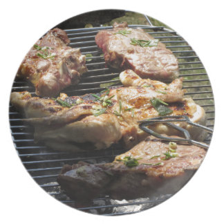 Filete y pollo asados a la parilla en la parrilla plato para fiesta