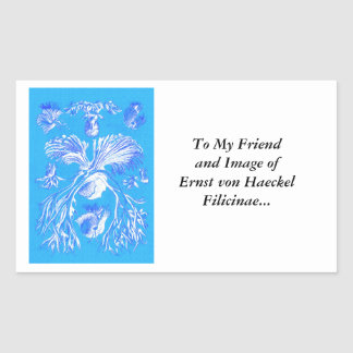 Filicinae on Blue Background Rectangular Sticker