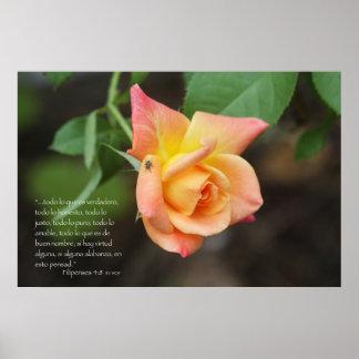 Filipenses 4:8 con rosa poster